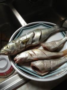Kauai's Pacific Ocean seafood !